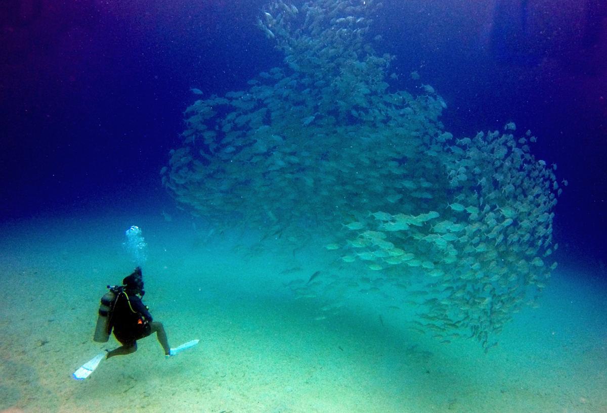 Club Paradise Palawan